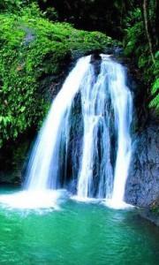 cascade_basse_terre_guadeloupe